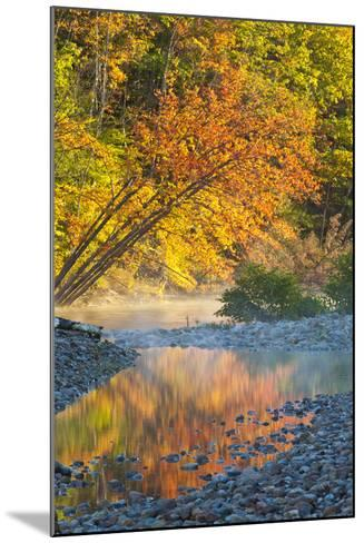 Fall Colors Reflect in the Saco River, New Hampshire. White Mountains-Jerry & Marcy Monkman-Mounted Photographic Print