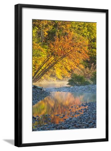 Fall Colors Reflect in the Saco River, New Hampshire. White Mountains-Jerry & Marcy Monkman-Framed Art Print