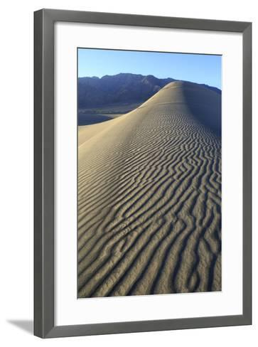 Patterns Along the Sand Dunes, Mesquite Dunes, Death Valley NP-James White-Framed Art Print