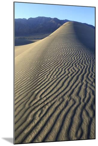 Patterns Along the Sand Dunes, Mesquite Dunes, Death Valley NP-James White-Mounted Photographic Print