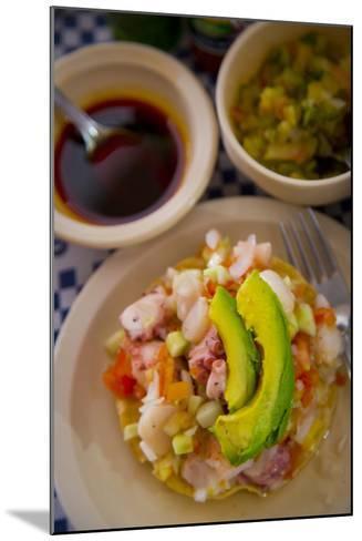 Ceviche, El Pitillal, Puerto Vallarta, Jalisco, Mexico-Douglas Peebles-Mounted Photographic Print
