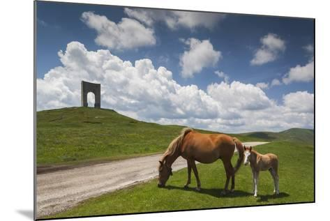 Bulgaria, Central Mts, Troyan, Troyan Pass, Battle Monument and Horses-Walter Bibikow-Mounted Photographic Print