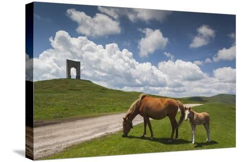 Bulgaria, Central Mts, Troyan, Troyan Pass, Battle Monument and Horses-Walter Bibikow-Stretched Canvas Print