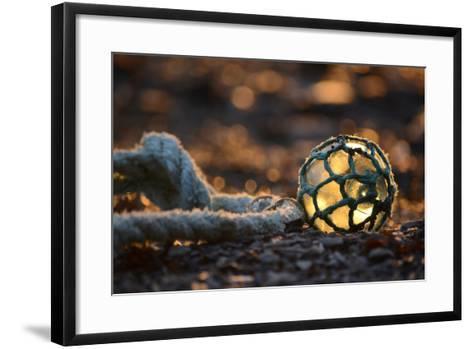 USA, Southeast Alaska Near Ketchikan, Japanese Glass Fishing Float-Savanah Stewart-Framed Art Print