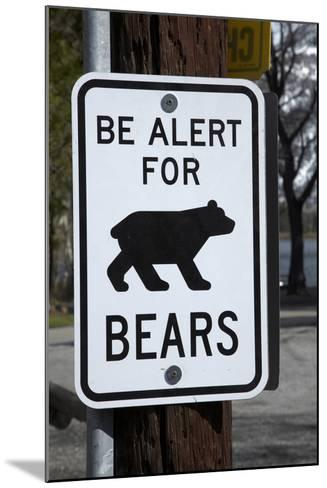 Bear Warning Sign, Silver Lake Resort, Eastern Sierra, California-David Wall-Mounted Photographic Print