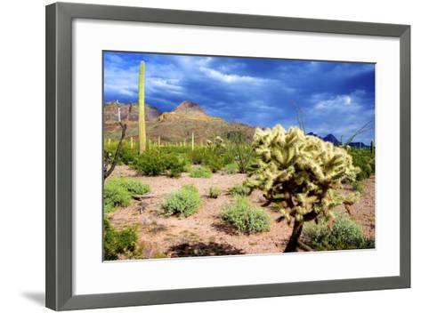 Organ Pipe Cactus NM, Saguaro and Cholla Cactus in the Ajo Mountains-Richard Wright-Framed Art Print