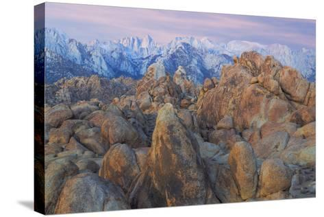 USA, California, Alabama Hills. View of Mount Whitney-Don Paulson-Stretched Canvas Print