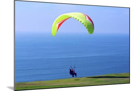 California, San Diego, Torrey Pines Gliderport. Hang Gliders Landing-Steve Ross-Mounted Photographic Print