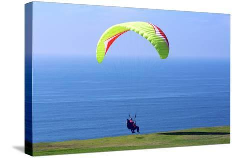 California, San Diego, Torrey Pines Gliderport. Hang Gliders Landing-Steve Ross-Stretched Canvas Print