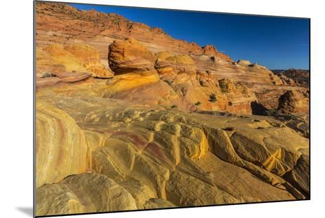 Sandstone Above the Wave, Vermillion Cliffs Wilderness, Arizona-Chuck Haney-Mounted Photographic Print