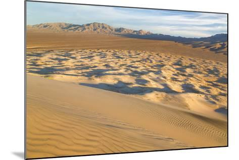 USA, California, Mohave National Preserve. View from Kelso Dunes-Don Paulson-Mounted Photographic Print
