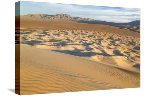 USA, California, Mohave National Preserve. View from Kelso Dunes-Don Paulson-Stretched Canvas Print
