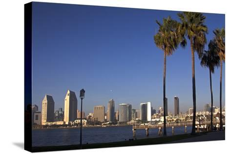 USA, California, San Diego. San Diego Skyline and Palm Trees-Kymri Wilt-Stretched Canvas Print