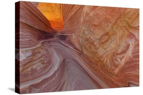 Sandstone at the Wave in the Vermillion Cliffs Wilderness, Arizona-Chuck Haney-Stretched Canvas Print