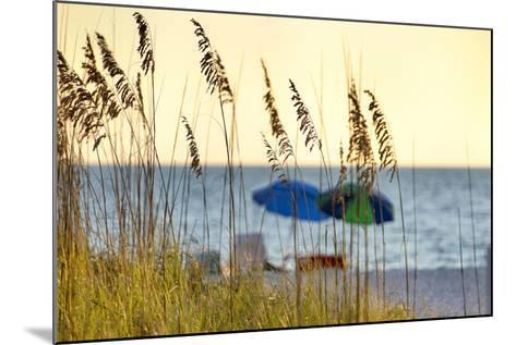 A Day at the Beach Is Seen Through the Sea Oats, West Coast, Florida-Sheila Haddad-Mounted Photographic Print