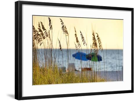 A Day at the Beach Is Seen Through the Sea Oats, West Coast, Florida-Sheila Haddad-Framed Art Print