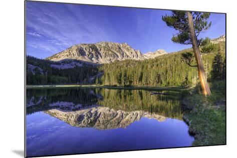 California, Sierra Nevada Mountains. Calm Reflections in Grass Lake-Dennis Flaherty-Mounted Photographic Print