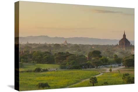 Myanmar. Bagan. Horse Carts and Cattle Walk the Roads at Sunset-Inger Hogstrom-Stretched Canvas Print