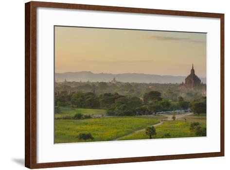 Myanmar. Bagan. Horse Carts and Cattle Walk the Roads at Sunset-Inger Hogstrom-Framed Art Print