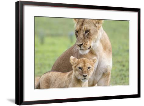 Lioness with its Cub Standing Together, Ngorongoro, Tanzania-James Heupel-Framed Art Print