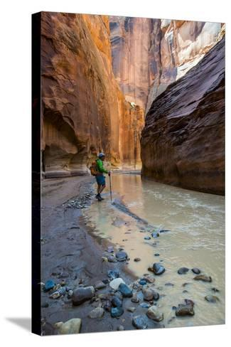 Howie Hiking in the Paria Canyon, Vermillion Cliffs Wilderness, Utah-Howie Garber-Stretched Canvas Print