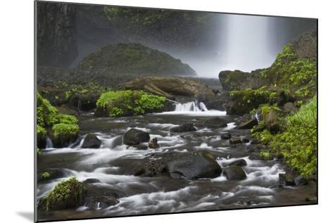 Latourell Falls and Creek, Columbia Gorge, Oregon, USA-Michel Hersen-Mounted Photographic Print