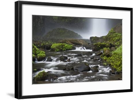 Latourell Falls and Creek, Columbia Gorge, Oregon, USA-Michel Hersen-Framed Art Print