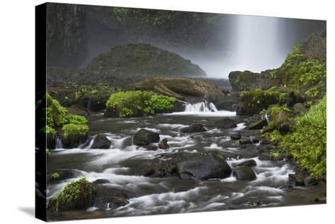 Latourell Falls and Creek, Columbia Gorge, Oregon, USA-Michel Hersen-Stretched Canvas Print