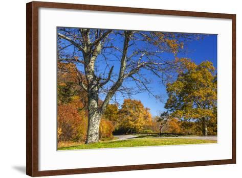 North Carolina, Blue Ridge Parkway, Green Knob Overlook Area-Jamie & Judy Wild-Framed Art Print