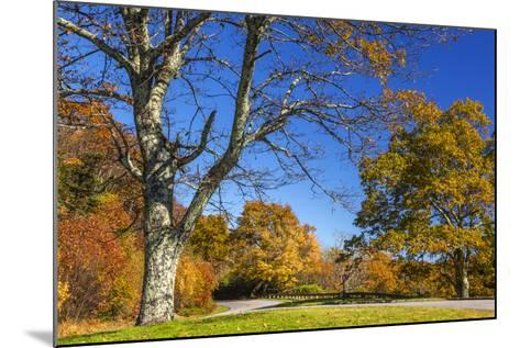 North Carolina, Blue Ridge Parkway, Green Knob Overlook Area-Jamie & Judy Wild-Mounted Photographic Print