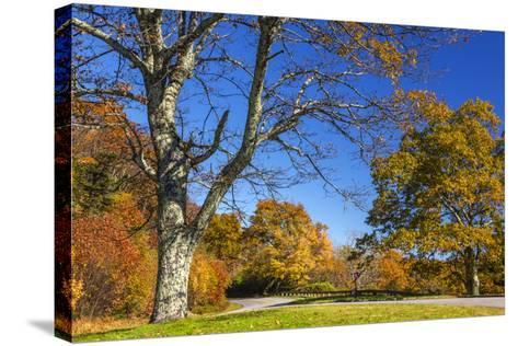 North Carolina, Blue Ridge Parkway, Green Knob Overlook Area-Jamie & Judy Wild-Stretched Canvas Print