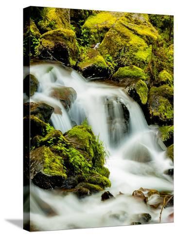 Oregon, Columbia River Gorge Scenic Area, Wahkeena Falls-Richard Duval-Stretched Canvas Print