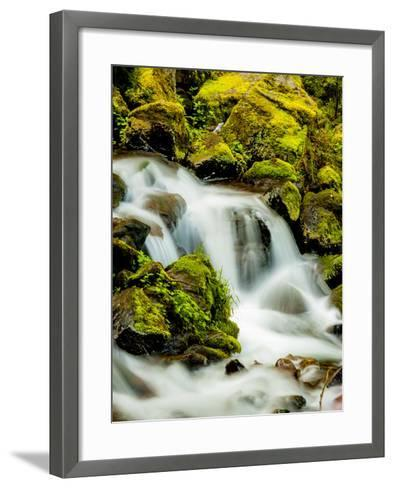 Oregon, Columbia River Gorge Scenic Area, Wahkeena Falls-Richard Duval-Framed Art Print