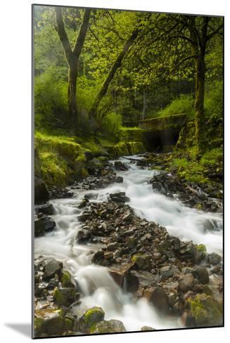 Oregon, Wahkeena Falls. Located Along I-84, the Columbia River Gorge-Richard Duval-Mounted Photographic Print