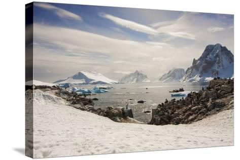Lemaire Channel, Antarctica. Kayaking, Penguins, and Blue-Eyed Shags-Janet Muir-Stretched Canvas Print