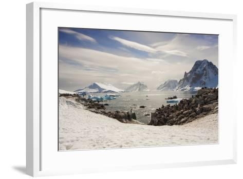 Lemaire Channel, Antarctica. Kayaking, Penguins, and Blue-Eyed Shags-Janet Muir-Framed Art Print