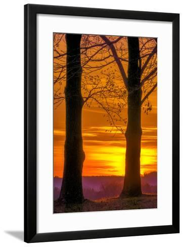 USA, Pennsylvania, King of Prussia. Tree Silhouette at Sunrise-Jay O'brien-Framed Art Print
