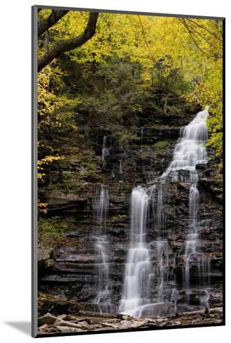 USA, Pennsylvania, Benton. Waterfall in Ricketts Glen State Park-Jay O'brien-Mounted Photographic Print