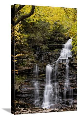 USA, Pennsylvania, Benton. Waterfall in Ricketts Glen State Park-Jay O'brien-Stretched Canvas Print