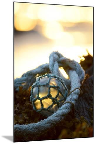 USA, Southeast Alaska Near Ketchikan, Japanese Glass Fishing Float-Savanah Stewart-Mounted Photographic Print