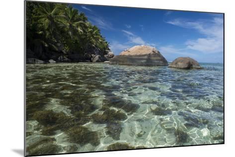Indian Ocean, Seychelles, Mahe, St. Anne Marine NP, Moyenne Island-Cindy Miller Hopkins-Mounted Photographic Print