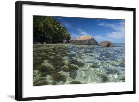 Indian Ocean, Seychelles, Mahe, St. Anne Marine NP, Moyenne Island-Cindy Miller Hopkins-Framed Art Print