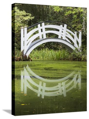 South Carolina, Charleston, Magnolia Plantation. Arching Bridge-Don Paulson-Stretched Canvas Print