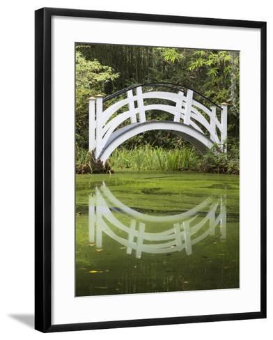 South Carolina, Charleston, Magnolia Plantation. Arching Bridge-Don Paulson-Framed Art Print