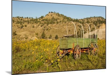 USA, South Dakota, Wild Horse Sanctuary. Scenic with Vintage Wagon-Cathy & Gordon Illg-Mounted Photographic Print