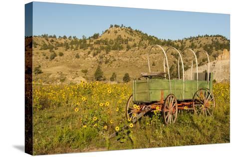 USA, South Dakota, Wild Horse Sanctuary. Scenic with Vintage Wagon-Cathy & Gordon Illg-Stretched Canvas Print
