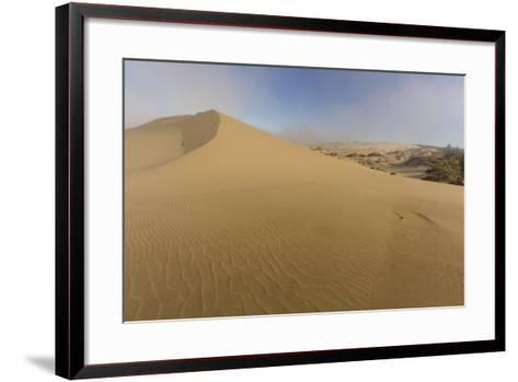 Sand Dunes and Pacific Ocean in the Oregon Dunes NRA, Oregon-Chuck Haney-Framed Art Print
