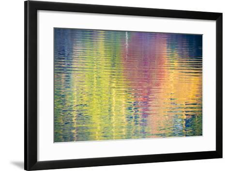 Fall Color Trees Reflected in Rippled Water-Trish Drury-Framed Art Print