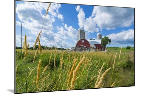 Eau Claire, Wisconsin, Farm and Red Barn in Picturesque Farming Scene-Bill Bachmann-Mounted Photographic Print
