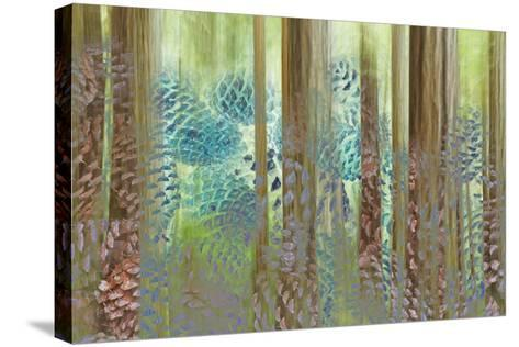 USA, Washington State, Seabeck. Collage of Pine Cones and Trees-Don Paulson-Stretched Canvas Print